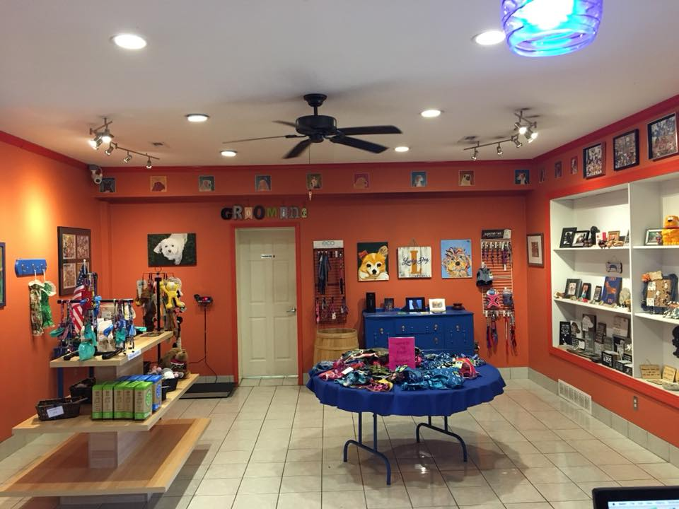 Lucky Dog Store